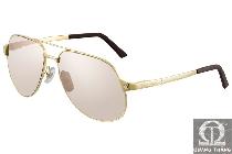 Cartier sunglasses T8200746